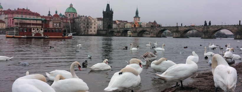 Prague, Czech Republic - Travel Itinerary