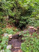 """Lallybroch"" Midhope Castle - Outlander Filming Location - Scotland, UK"