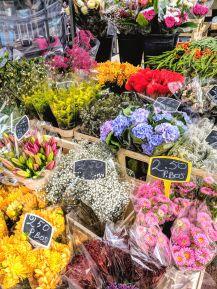 Bloemenmarkt - Amsterdam, Netherlands